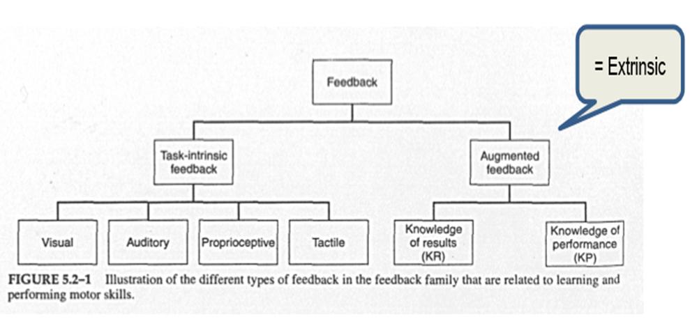 feedback-schema